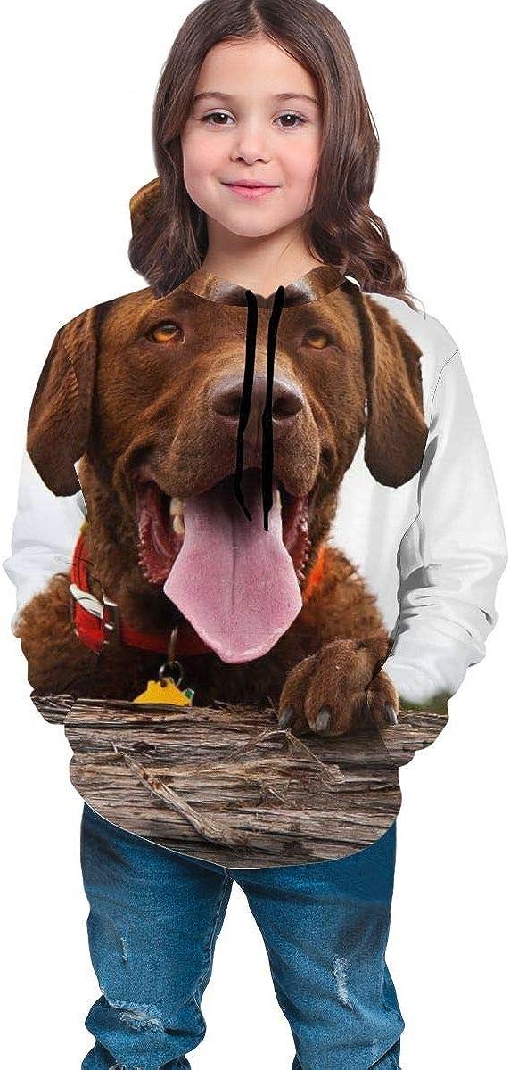 Kjiurhfyheuij 3D Print Pullover Hoodies with Pocket Honey Labrador Dog Fleece Hooded Sweatshirt for Youth Kids Boys Girls