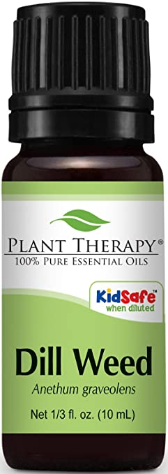 Plant Therapy Dill Oil