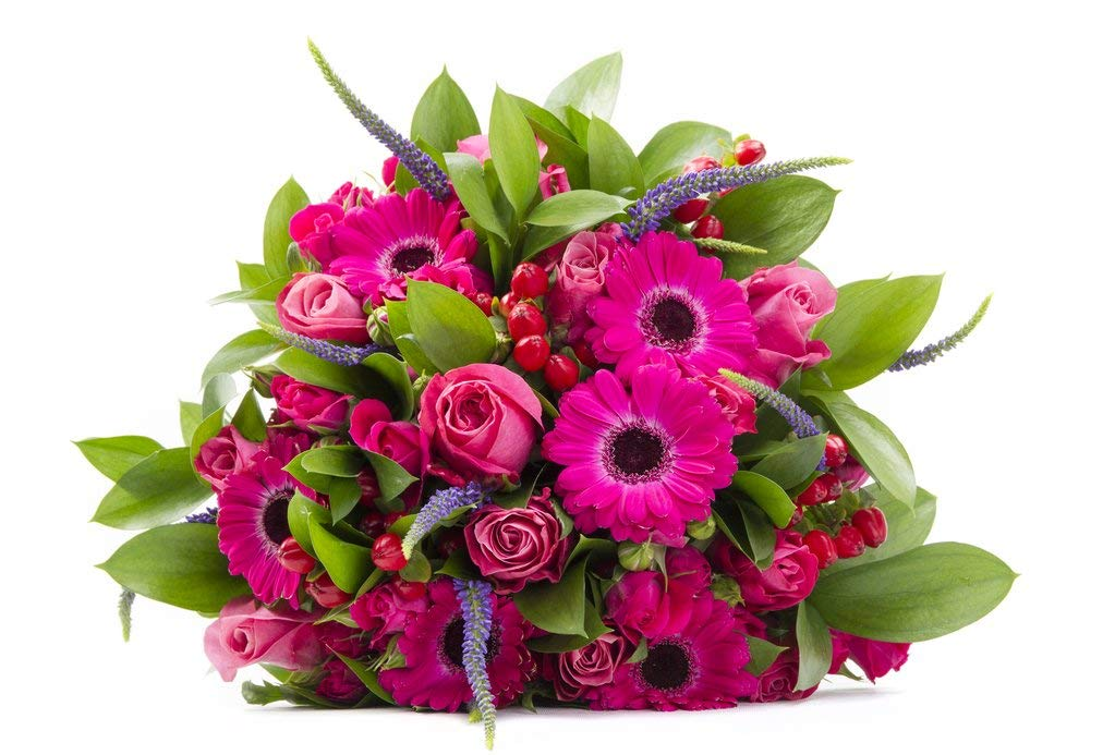 Plush Blush Pink Roses and Pink and Red Gerberas Sustainably Grown and Harvested, No Vase Included