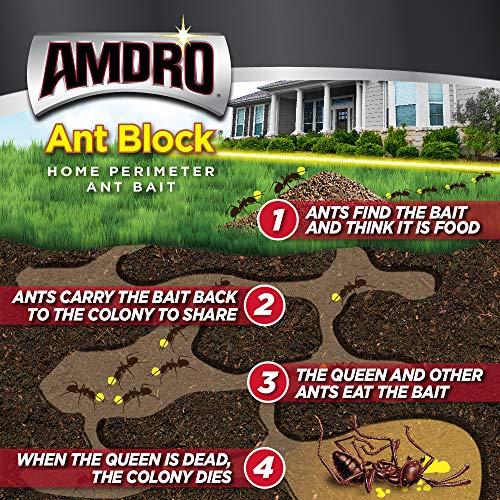 AMDRO Ant Block Home Perimeter Ant Bait Granules