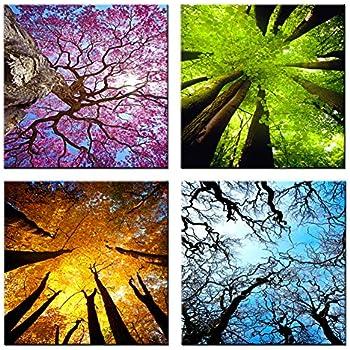 Amazon Com 4 Seasons Tree Art Vintage Print Poster Canvas