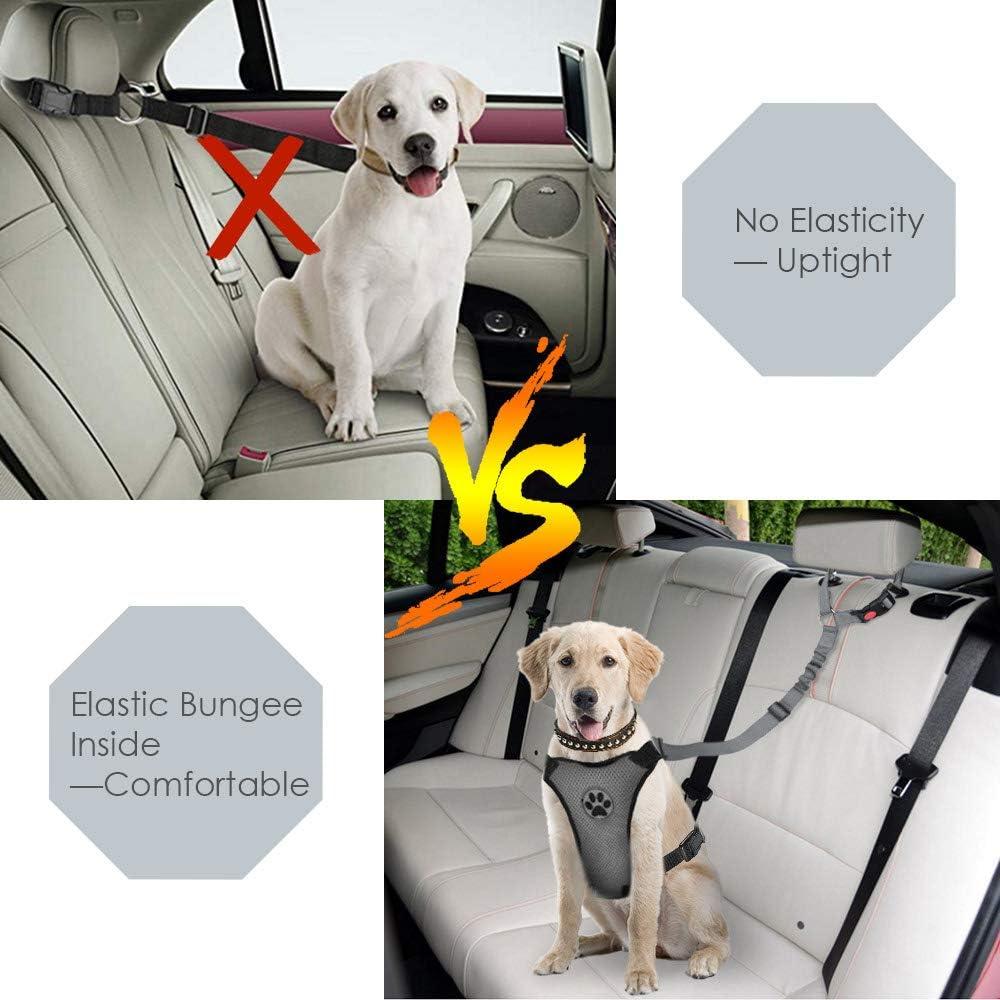 SlowTon Cinturón de Seguridad para Perros, Paquete de 2 Cinturón ...