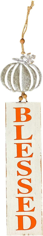 "Fall Autumn Home Wall Door Room Decor Sign Modern Farmhouse White Silver Orange Metal & Wood 30"" x 6"" (Blessed Pumpkin)"