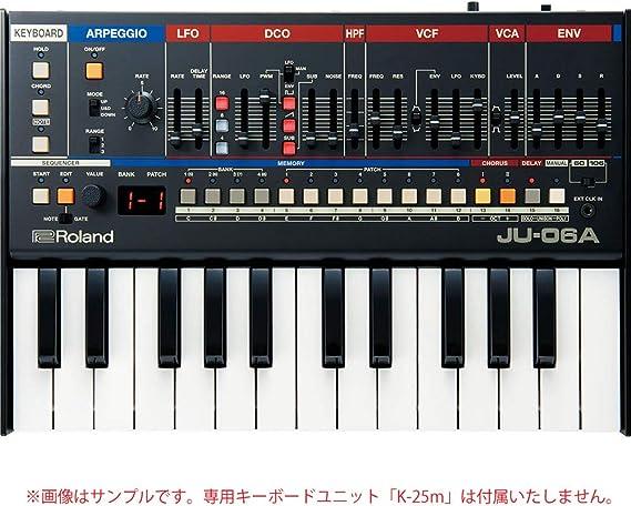 Roland Jupiter JU-06A: Amazon.es: Instrumentos musicales