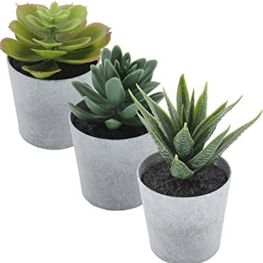 Artificial Succulents set of 3 Realistic Fake Plants with plastic Pots for Home and Office Decoration, Including Aloe, Echeveria laui and Haworthia coarctata f. greenii, 4~4.5in (H) x 2.5-2.75in (W)