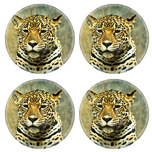 Jaguar Natural Rubber Round Coasters