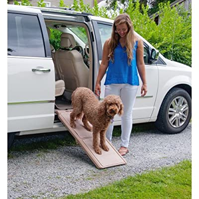 Pet Gear Travel Lite Ramp with supertraX, Black/Green