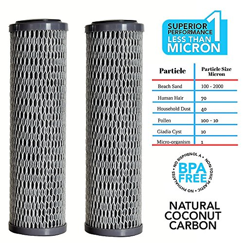 Clear2o CUF1252 Universal Advanced Premium Carbon Filter Standard Capacity Whole House & RV Water Filter, 2 Filters Included, Gray (Pack of 2) ()