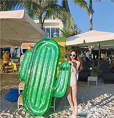 WULEI Lady of Luck Gigante Hinchable Cactus, Inflatable ...
