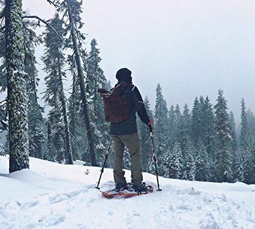 TerraTHEO A6 Hiking and Trekking Poles (Pair) Durable & Lightweight Ergonomic Grip and Ultra Lock Hiking, Nordic Walking, Cross Country Ski Sticks