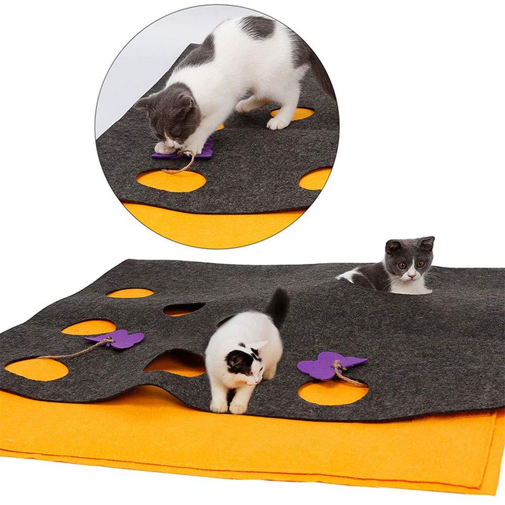 OER Alfombrilla de Juegos para Gatos con Mariposa interactiva para Jugar y Entrenar a los Gatos, para Todas Las Razas de Gatos Grandes y Gatitos: Amazon.es: ...