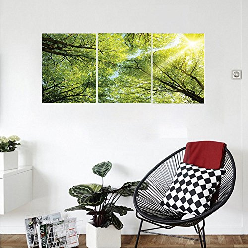 Liguo88 Custom canvas Farm House Decor Collection The Warm Spring Sun Shining Through the Canopy of Tall Beech Trees Romantic Scene Bedroom Living Room Wall Hanging Green (Tall Acrylic Canopy)