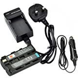 DSTE® Rechargeable Li-ion Battery + Charger DC01U for Sony NP-F550, NP-F330, NP-F530, NP-F570 and Sony CCD-RV100, CCD-RV200, CCD-SC5, CCD-SC5/E, CCD-SC55E, CCD-SC55, CCD-SC6, CCD-SC65, CCD-SC7, CCD-SC7/E, CCD-SC8/E, CCD-SC9, CCD-TR1, CCD-TR11, CCD-TR1100E, CCD-TR12, CCD-TR18, CCD-TR18E, CCD-TR1E, CCD-TR2, CCD-TR200, CCD-TR205, CCD-TR215, CCD-TR2200E, CCD-TR2300, CCD-TR2300E, CCD-TR280PK, CCD-TR290PK, CCD-TR3, CCD-TR300, CCD-TR3000, CCD-TR3000E, CCD-TR3100E, CCD-TR311E, CCD-TR315, CCD-TR315E, CCD-TR317, CCD-TR3200E, CCD-TR3300 and more ...