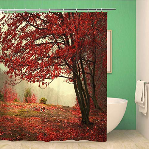 Awowee Bathroom Shower Curtain Green Landscape Beautiful Autumn Day Into The Forest Yellow Polyester Fabric 72x78 inches Waterproof Bath Curtain Set with Hooks