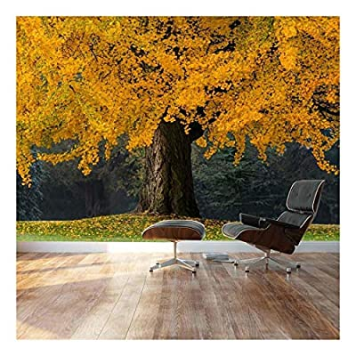 Beautiful Yellow Autumn Tree - Landscape - Wall Mural, Removable Sticker, Home Decor - 100x144 inches
