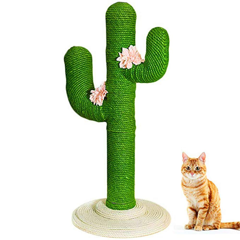 BeiXiaoFen Cat Climbing Frame - Vertical Cat Jumping Cat Cat Scratch Board Cat Educational Toys, Fashion Cactus Shape Design, Anti-Slip, Suitable for All Cats (Green) by BeiXiaoFen