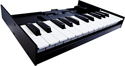 Roland boutique k-25m keyboard unit.