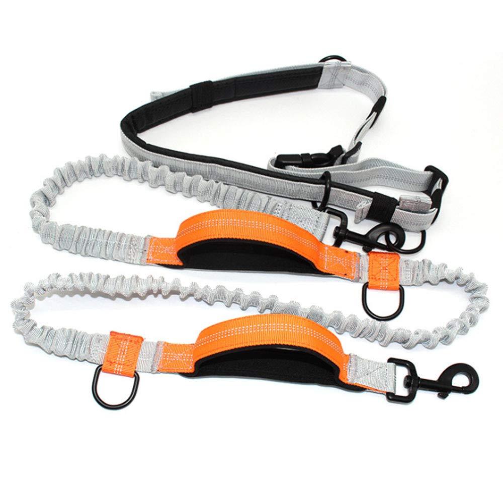VVAP Pets Hands Free Dog Leash,Dual Handle Running Leash,Shock Absorbing, Extendible Bungee,Adjustable Waist Belt,for Running, Jogging or Walking,Orange