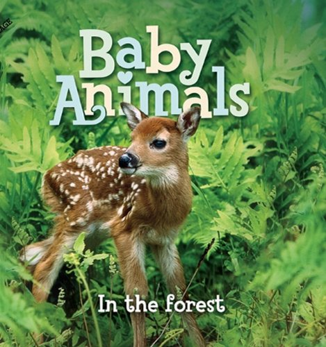 baby-animals-in-the-forest