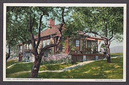 Iris & Wisteria Bungalow Hillbourne Club Katonah NY postcard 1910s (Iris Frogs)