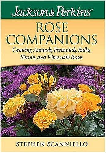 Jackson Perkins Rose Companions Jackson Perkin S Gardening