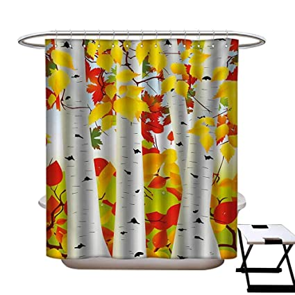 BlountDecor Fall Shower Curtains With Hooks Autumn Scene Orange Fallen Leaves Dying Nature Cycle
