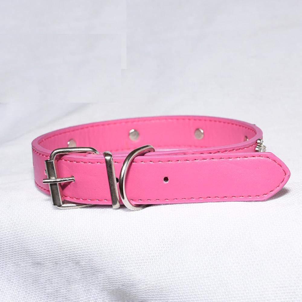 Daeou Collari per cani Pu cane collo anello diamante corona piccolo cane di medie dimensioni e grandi accessori per animali, 2.5cmx50cm