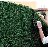 efeu 1 meter 6 pflanzen 100 sichtschutz garten. Black Bedroom Furniture Sets. Home Design Ideas
