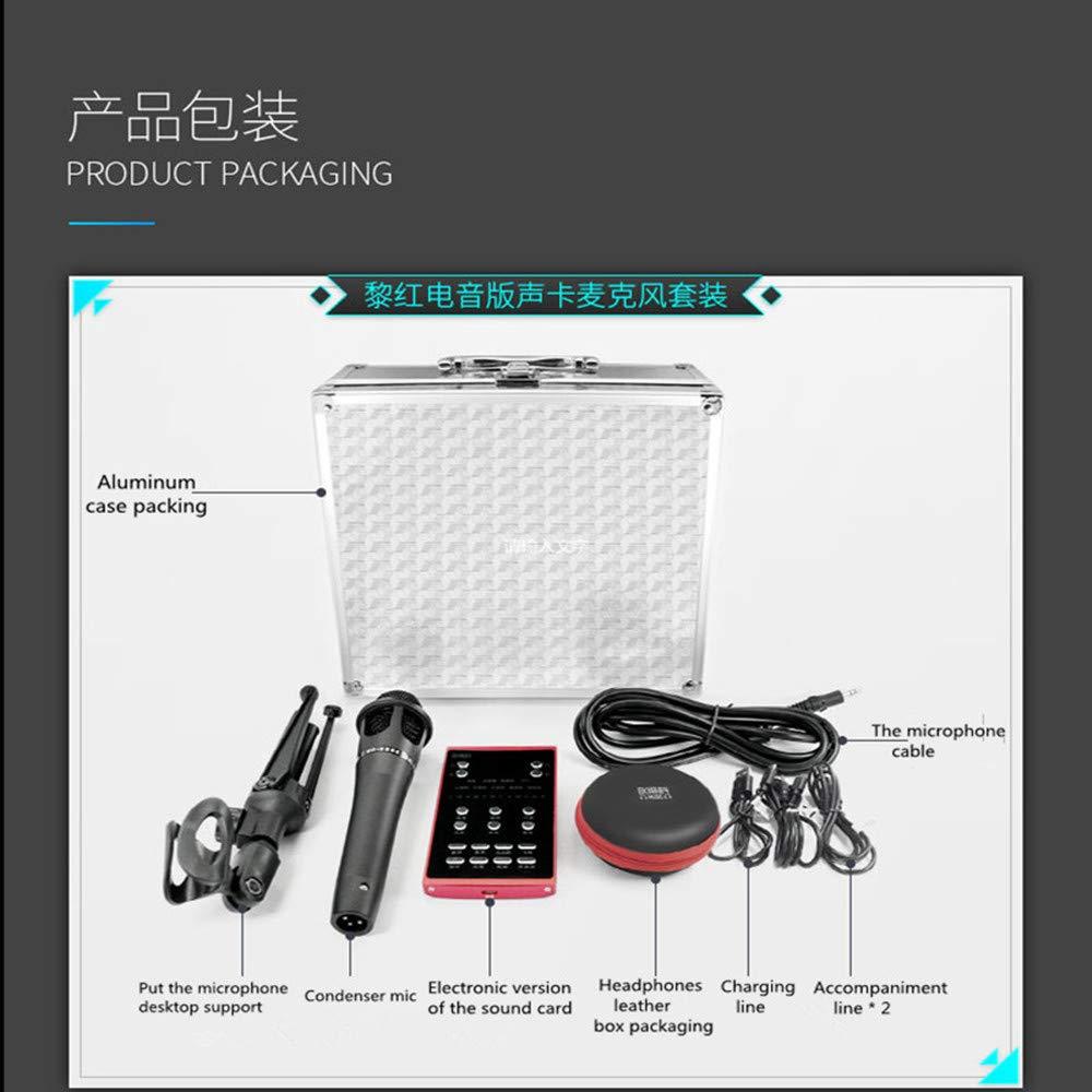 Amazon com: DK339 Portable Karaoke Mobile Sound Card
