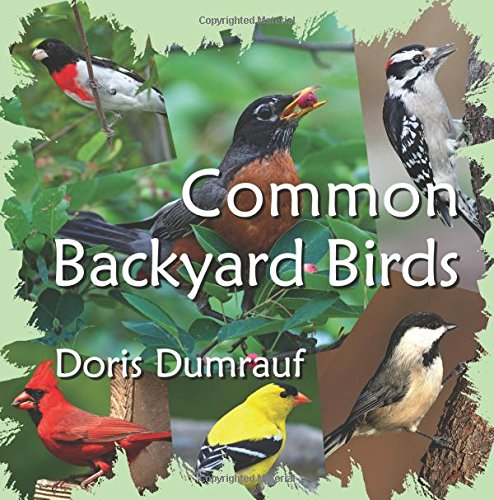 - Common Backyard Birds: Doris Dumrauf: 9780997676716: Amazon.com: Books