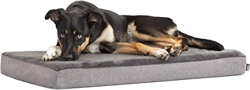 Barkbox-Memory-Foam-Platform-Dog-Bed