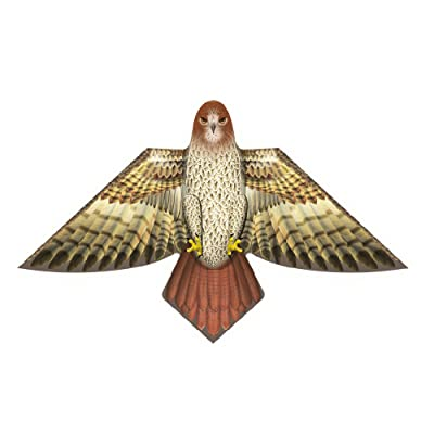 X-Kites Birds of Feather - 54 inch Hawk Kite: Toys & Games