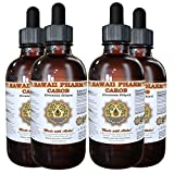 Carob Liquid Extract, Organic Carob (Ceratonia Siliqua) Tincture Supplement 4x4 oz