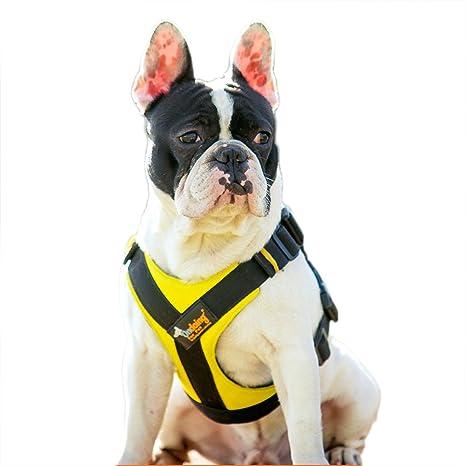 ondoing No de Pull arnés del perro seguro Vest arnés ajustable ...