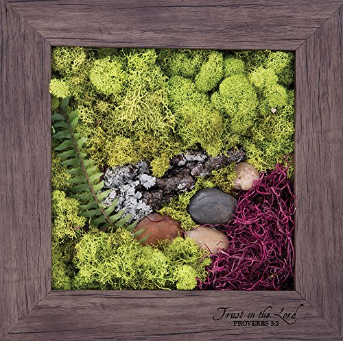 Carpentree 11''x11'' Trust-Biophilic Framed Art by Carpentree