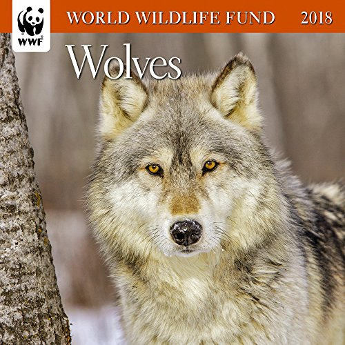 Wolves WWF Mini Wall Calendar 2018