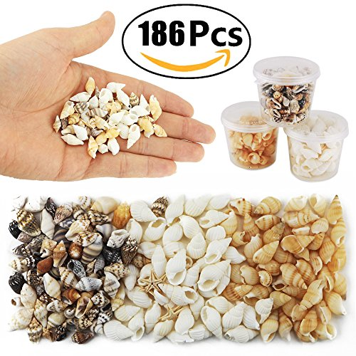 Yexpress 186 pcs MINI TINY Sea Shells Mixed Ocean Beach Seashells, Natural Starfish for Home Decorations, Beach Theme Party, Candle Making, Wedding Decor, DIY Crafts, Fish Tank and Vase Filler (Mini Beach Natural Shells)