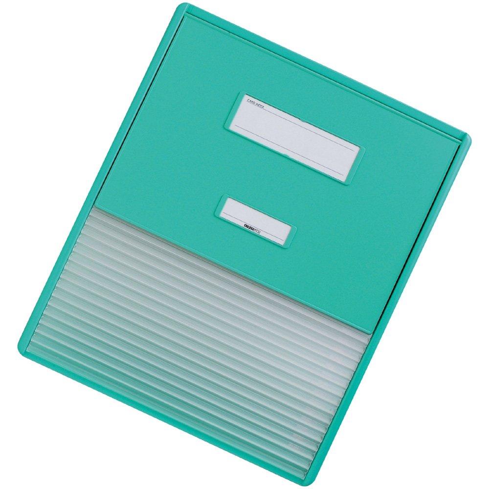 リヒトラブ カラーカードインデックス  HC114C-3 A4 グリーン B005GDWIQA A3(A4縦2面 16ポケット)|グリーン グリーン A3(A4縦2面 16ポケット)