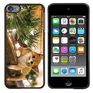 EJOOY---Cubierta de la caja de protección para la piel dura ** Apple iPod Touch 6 6th Touch6 ** --El gato feliz