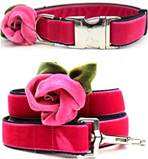 """product image for Diva-Dog 'Rosie Pink' Custom Velvet 1"""" Wide Dog Collar with Plain or Engraved Buckle, Matching Leash Available - M/L, XL"""