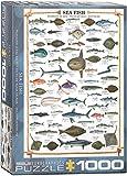 1000 piece fish puzzles - EuroGraphics Sea Fish 1000 Piece Puzzle
