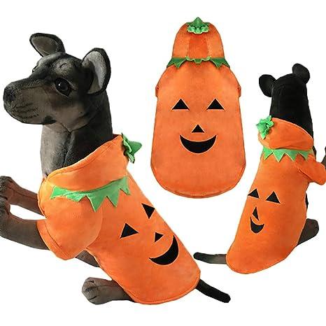 O-center - Disfraz de Calabaza para Mascota, Perro, Gato, Cachorro ...