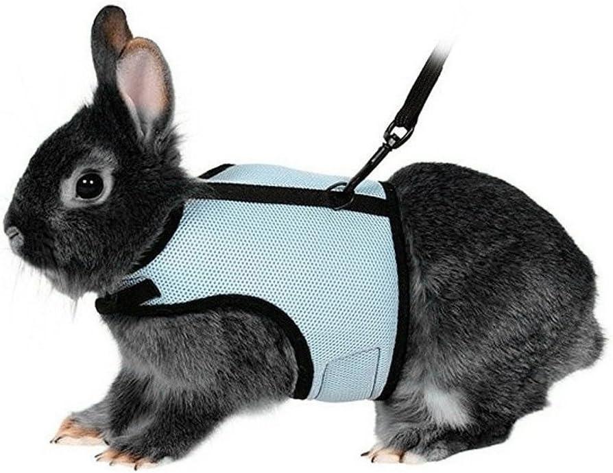 UEETEK Arnés suave con plomo para los conejos mascotas conejito poco - tamaño L (azul cielo)