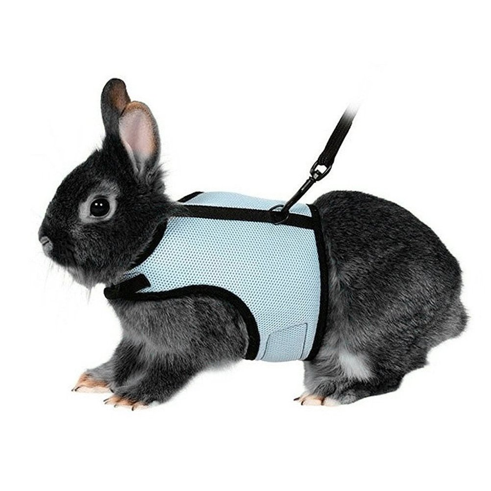 UEETEK Soft Harness with Lead for Rabbits Bunny Little Pets - Size XL(Sky Blue)