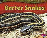 Garter Snakes, Mary R. Dunn, 1476520720
