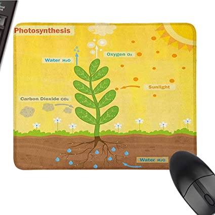 Amazon com : Customized Mouse Pad Educational, Cartoon
