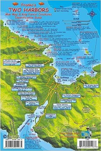 Two Harbors Santa Catalina Map & Kelp Forest Creatures Guide Franko ...