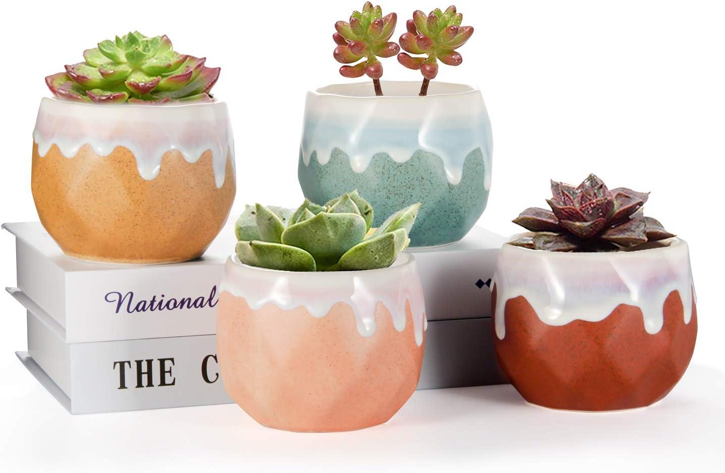 EHWINE Succulent Pots 4 PCS, 3.5 Inch Indoor Plant Pots with Drainage Hole, Natural Color Contrast Ceramic Pot Wonderful Decor for Gardening, Desk, Bookshelf,Living Room