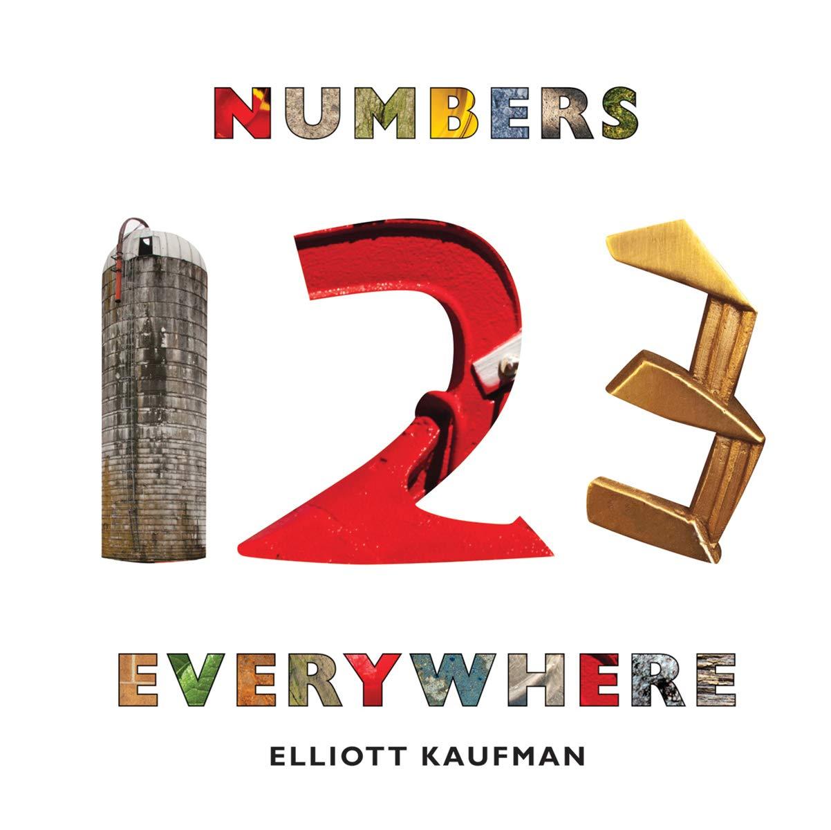 Amazon.com: Numbers Everywhere (9780789211576): Kaufman, Elliott ...