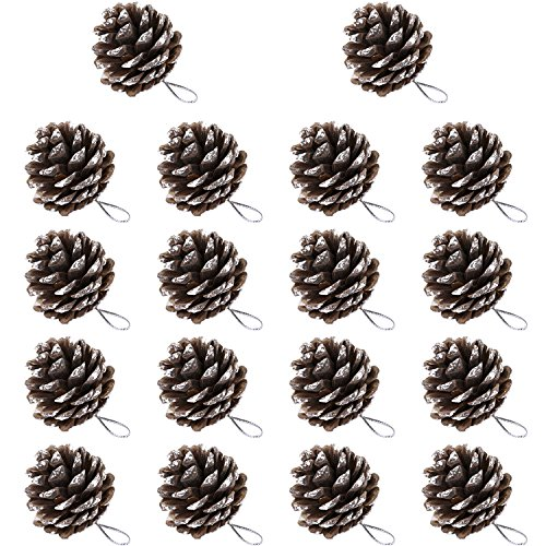 BBTO 18 Pieces 1.57 Inch Christmas Pine Cones Snow Tipped Natural Pine Cone with String for Christmas Tree Decoration (White)]()